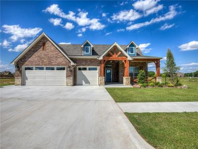 Oklahoma City Single Family Home For Sale: 2816 Crystal Creek Drive