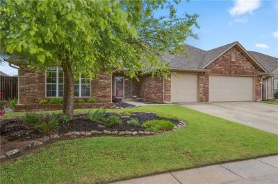 Norman Single Family Home For Sale: 313 Nathan Drive