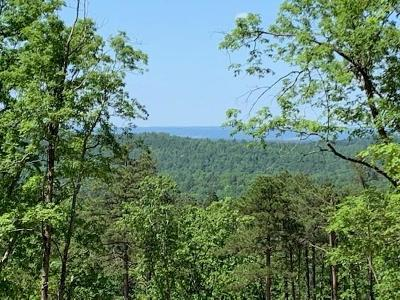 Broken Bow Residential Lots & Land For Sale: 53 Carter Mountain