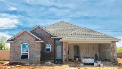 Single Family Home For Sale: 14001 Tranquil Springs Court