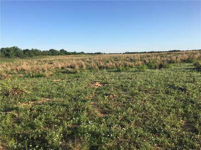 Beckham County Farm & Ranch For Sale: 17565 E 1210 Rd