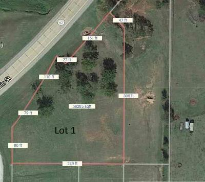 Prague Residential Lots & Land For Sale: 301 W Main Street