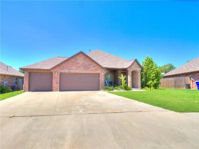 Norman Single Family Home For Sale: 2605 Summit Terrace Drive