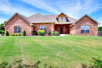 Oklahoma City Single Family Home For Sale: 12825 Willow Bay Drive