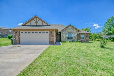 Blanchard Single Family Home For Sale: 1605 Appaloosa Drive
