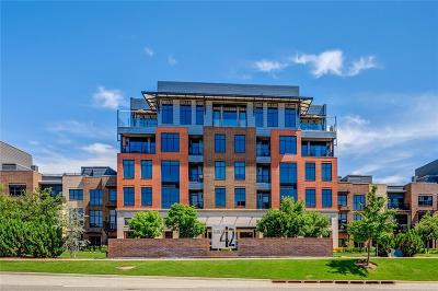 Oklahoma City Condo/Townhouse For Sale: 301 NE 4th Street #11