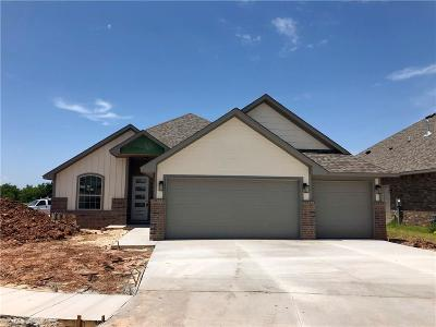 Norman Single Family Home For Sale: 1316 Stone Creek Drive