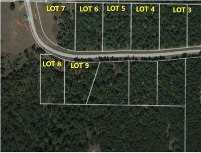 Chandler Residential Lots & Land For Sale: 910400 N Oak Bend Trail