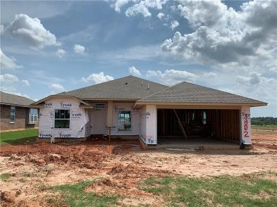 Norman Single Family Home For Sale: 3802 Mistwood Place