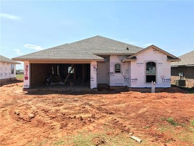 Norman Single Family Home For Sale: 3810 Mistwood Place
