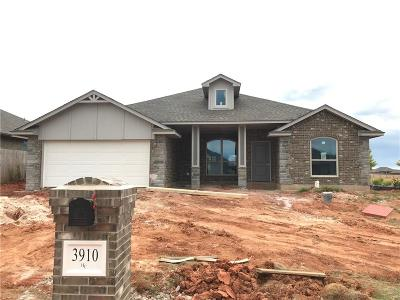 Norman Single Family Home For Sale: 3910 Sledmere Lane