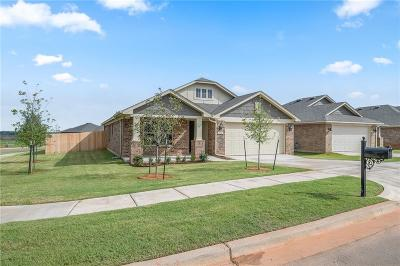 Norman Single Family Home For Sale: 813 Blue Fish Road
