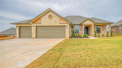 Norman Single Family Home For Sale: 317 Turnberry Drive