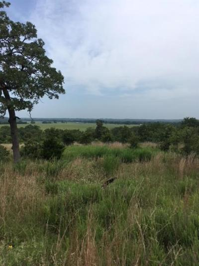 Residential Lots & Land For Sale: 8400 D Hwy 9 Highway