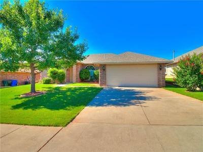 Norman Single Family Home For Sale: 217 Dollina Court