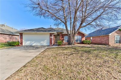 Norman Single Family Home For Sale: 4109 Gyrfalcon Drive