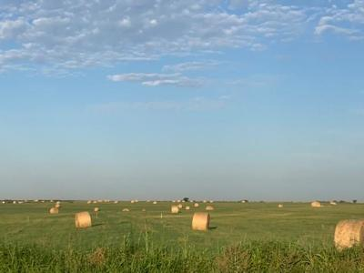 Chickasha Residential Lots & Land For Sale: N Highway 81