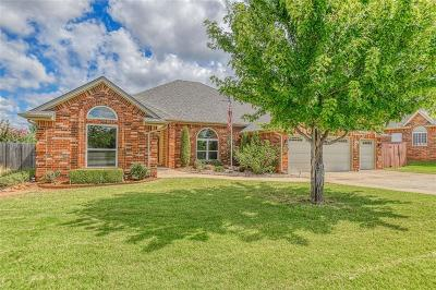 Norman Single Family Home For Sale: 2813 Misty Lake Court