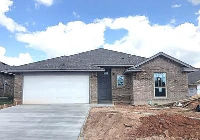 Norman Single Family Home For Sale: 4205 Caracara Court