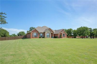 Blanchard Single Family Home For Sale: 3265 Staghorn Drive