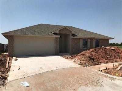 Edmond Single Family Home For Sale: 19817 Barrister Circle