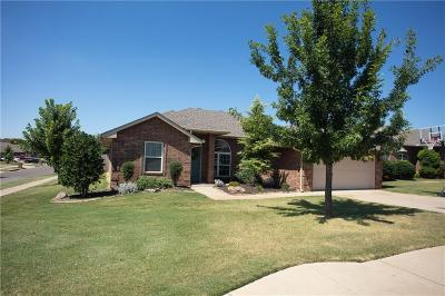 Norman Single Family Home For Sale: 1001 Eagle Cliff Drive