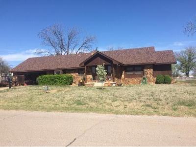 Elk City Single Family Home For Sale: 803 N Washington Avenue