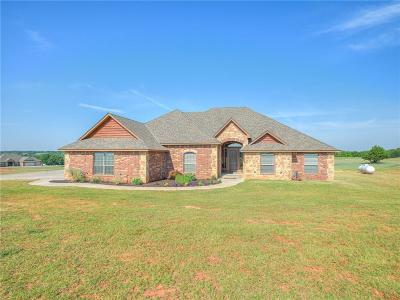 Blanchard OK Single Family Home For Sale: $349,000
