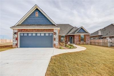 Norman Single Family Home For Sale: 3713 Andrew Court