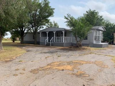 Clinton Single Family Home For Sale: 1725 Sorter Drive