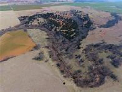 Canadian County, Oklahoma County Farm & Ranch For Sale: NE 150th Street