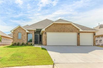 Norman Single Family Home For Sale: 1221 Pebble Pond Drive