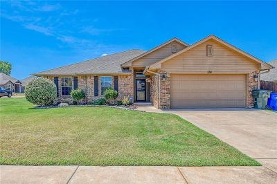 Norman Single Family Home For Sale: 504 Dena Drive