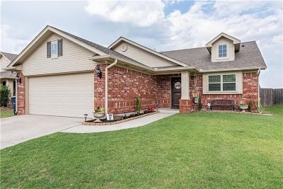 Oklahoma City Single Family Home For Sale: 16005 Raindust Drive