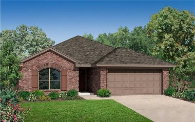 Norman Single Family Home For Sale: 3919 Abingdon Drive