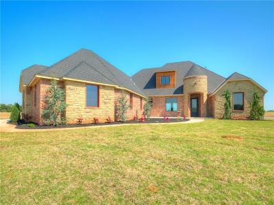 Single Family Home For Sale: 982 Ambivi Circle