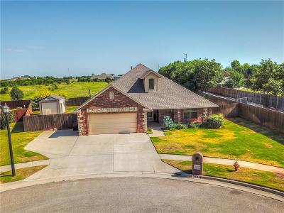 Moore Single Family Home For Sale: 3437 Windmill Road
