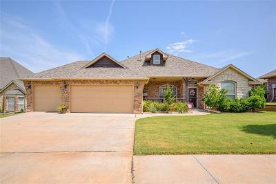Norman Single Family Home For Sale: 309 Horizon View