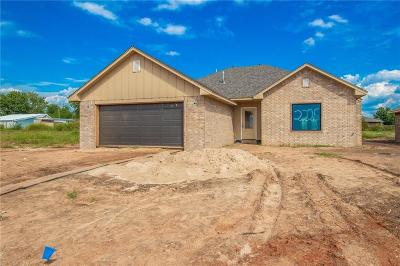 Shawnee Single Family Home For Sale: 2225 Bent Tree Drive
