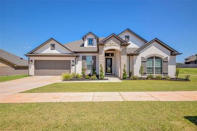 Norman Single Family Home For Sale: 205 Sonora Lane