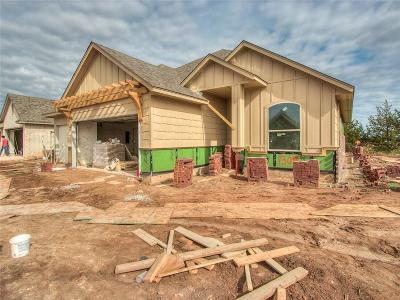 Norman Single Family Home For Sale: 1309 Stone Creek Drive