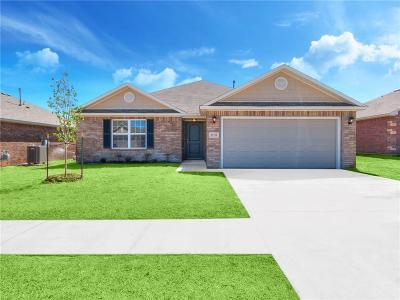 Oklahoma City Single Family Home For Sale: 8800 SW 48th Street