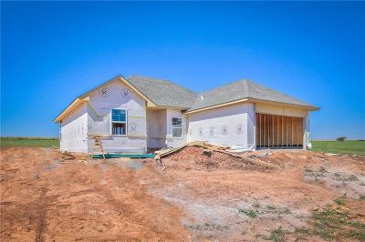 Edmond Single Family Home For Sale: 14525 Meadow Ridge Road
