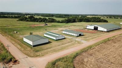 Guthrie Single Family Home For Sale: 3714 W Triplett Road