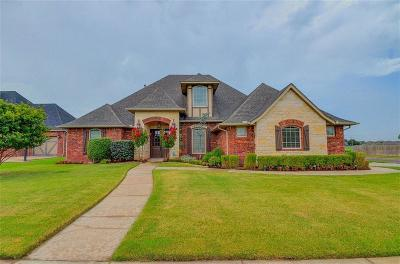 Norman Single Family Home For Sale: 1300 Sawgrass Drive