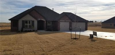 Blanchard Single Family Home For Sale: 985 County Street 2982
