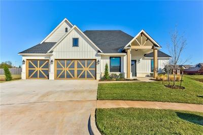 Norman Single Family Home For Sale: 3809 Brenton Circle