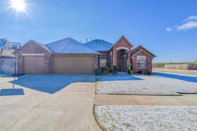 Oklahoma City Single Family Home For Sale: 8812 SW 48th Street