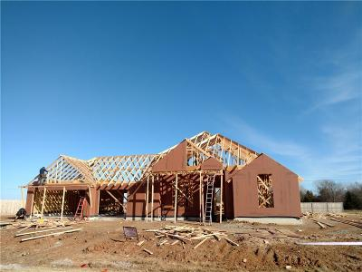 Oklahoma City Single Family Home For Sale: 12208 Sequro Lane