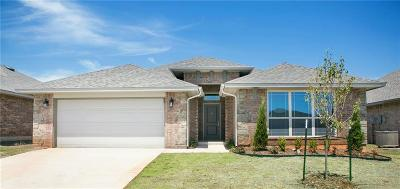 Norman Single Family Home For Sale: 3919 Wiltshire Drive